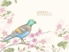 花卉背景矢量图基于简单鸟和樱桃枝