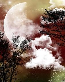 浪漫世界 树木 星球 影楼背景图片