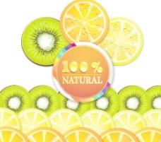 自然鲜美水果片矢量素材3