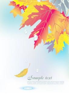 精美枫叶背景矢量素材3