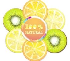 自然鲜美水果片矢量素材5