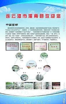 连云港农业展板图片