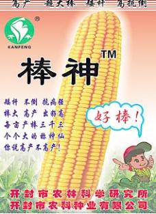 玉米海报设计图片