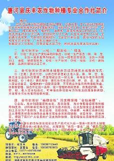 农业合作社展板图片