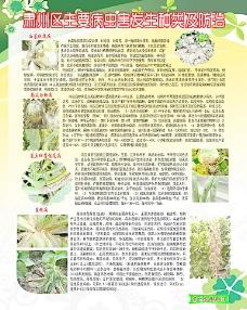农业技术展板图片