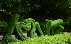 LOVE 植物造型图片
