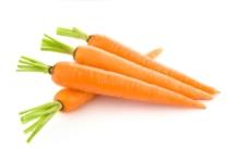胡萝卜图片