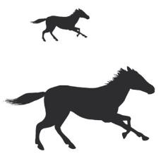 逐帧奔跑的马flash动画