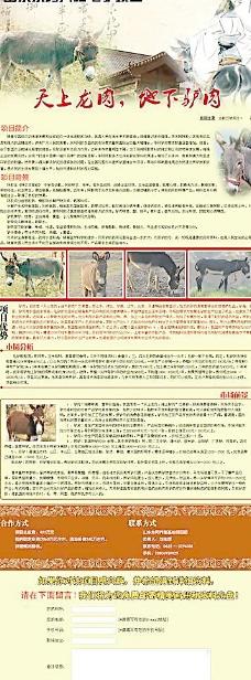 毛驴养殖项目图片