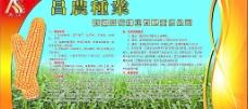 昌农种业图片