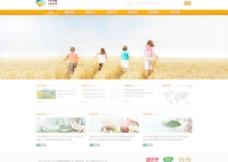 中粮网站设计图片