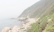 西涌海滩图片