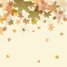 枫叶在秋天-背景