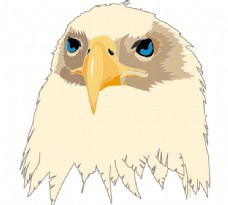 Aguia_Eagle logo设计欣赏 Aguia_Eagle广告公司LOGO下载标志设计欣赏