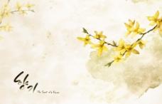 手绘迎春花