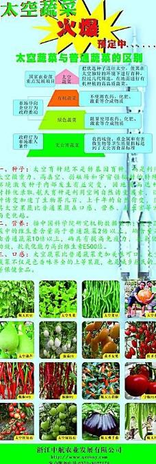 中航太空蔬菜区别普通蔬菜图片