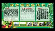 绿色蔬菜宣传栏 展板图片