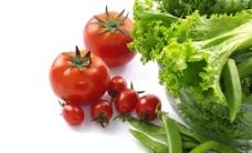 新鲜蔬菜图片