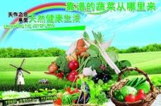 蔬菜海报图片