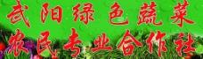 绿色蔬菜门头图片