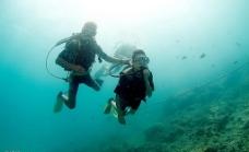 游泳潜水图片