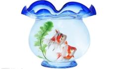 金鱼夫妻与孤独水草相依为命图片