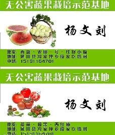 蔬菜瓜果名片图片