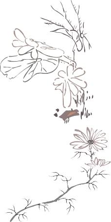 荷叶素描图片手绘