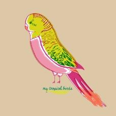 印花矢量图 动物 鸟 文字 英文 免费素材