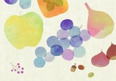位图 插画师 Birds Yasuko 鸟靖子 免费素材
