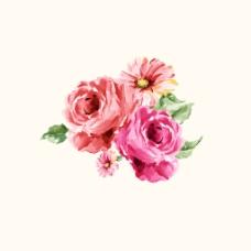 位图 psd 植物 花朵 pop原创 免费素材