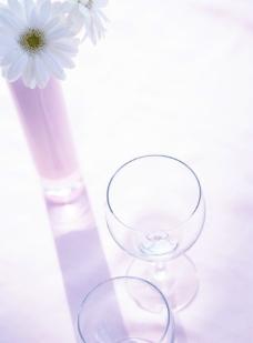 室内花朵摄影图片