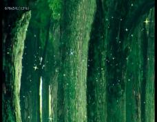 绿色树林荧光特效