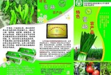 蔬菜基地宣传彩页图片
