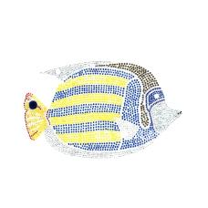纯烫钻 海洋动物 鱼 免费素材