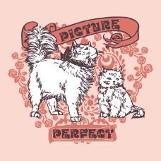 印花矢量图 T恤图案 图文结合 动物 猫 免费素材