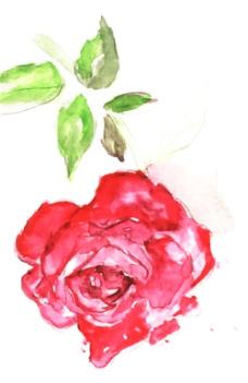 位图 植物 写意花卉 花朵 玫瑰 免费素材