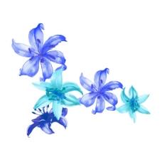 位图 植物 写意花卉 花朵 百合 免费素材