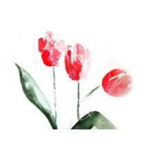 位图 植物 写意花卉 花朵 郁金香 免费素材