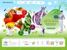 清新绿色蔬菜网页psd模板