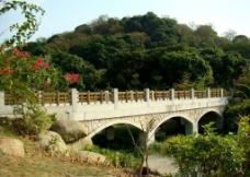 萝岗香雪公园图片
