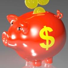 硬币进扑满显示美国收入