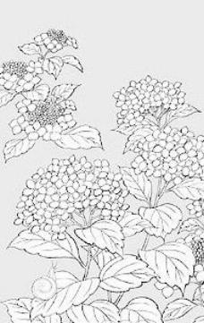 日本线描植物花卉矢量素材-1(紫阳花与蜗牛)