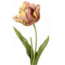 位图 艺术效果 手绘 植物 免费素材