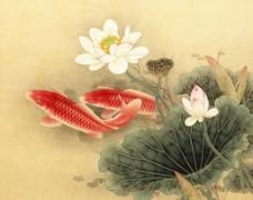 鱼工笔画图片