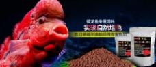 精灵鱼饲料海报宣传