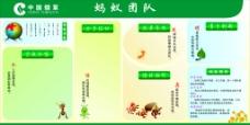 中国烟草蚂蚁团队