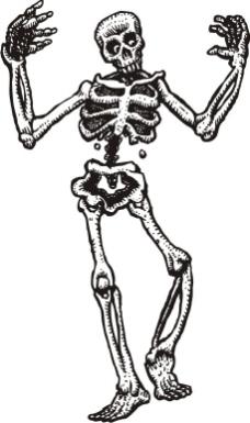 印花矢量图 骷髅 色彩 黑白色 骨骼 免费素材