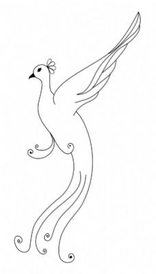 最漂亮的孔雀的简笔画