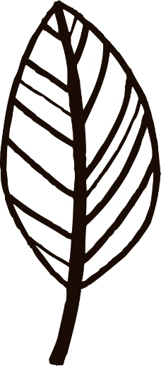 印花矢量图 优雅植物 叶子 色彩 黑白色 免费素材